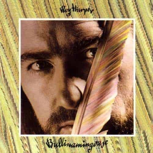 'Bullinamingvase' by Roy Harper