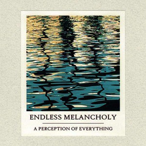 'A Perception Of Everything' by Endless Melancholy