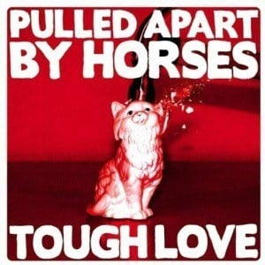 'TOUGH LOVE' by Pulled Apart By Horses