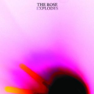 'The Rose Explodes' by Dream Boat