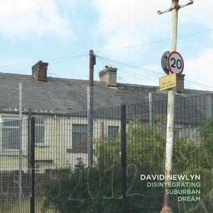 'Disintegrating Suburban Dream' by David Newlyn