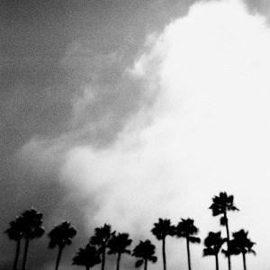 'Radiation Breeze' by Richard Rose