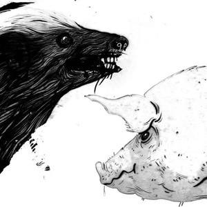 'Honey Badger / Pig' by Clark
