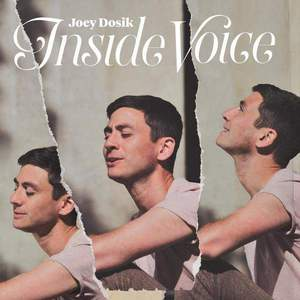 'Inside Voice' by Joey Dosik