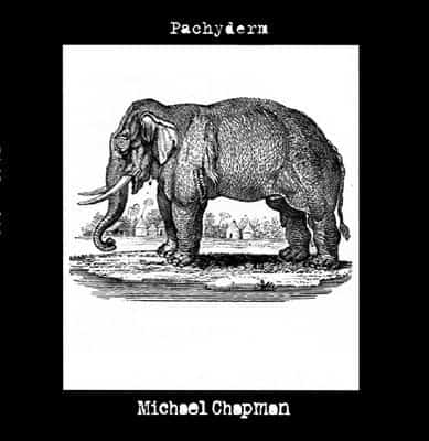 'Pachyderm' by Michael Chapman
