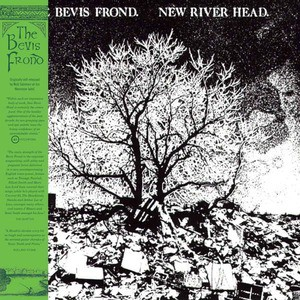 'New River Head' by The Bevis Frond