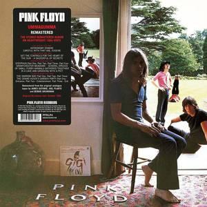 'Ummagumma' by Pink Floyd
