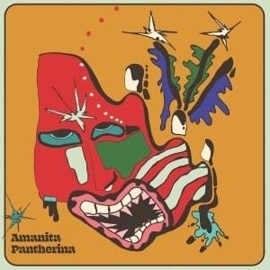 'Amanita Pantherina' by Cabbage
