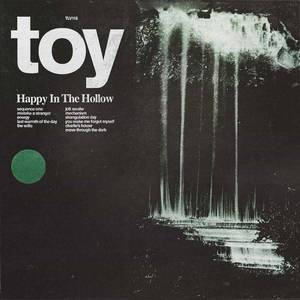 'Happy In The Hollow' by TOY