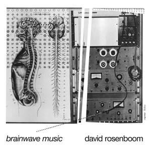 'Brainwave Music' by David Rosenboom