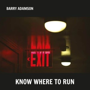 'Know Where To Run' by Barry Adamson