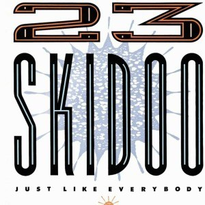 Just Like Everybody by 23 Skidoo