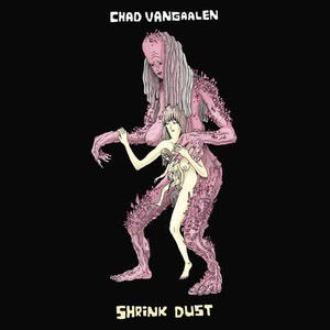 'Shrink Dust' by Chad VanGaalen