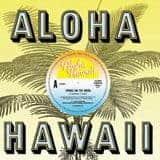 Towns On The Moon by Aloha Hawaii