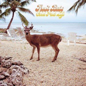 'Gold Past Life' by Fruit Bats