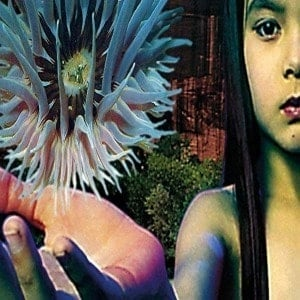 'Lifeforms' by The Future Sound Of London