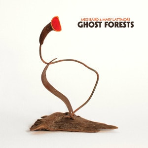 'Ghost Forests' by Meg Baird & Mary Lattimore