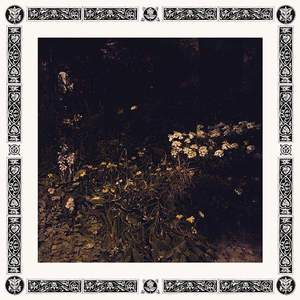 'Pale Bloom' by Sarah Davachi