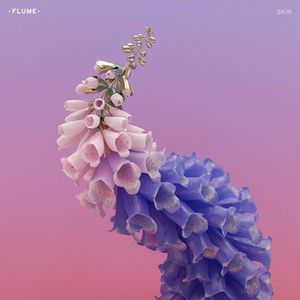 'Skin' by Flume