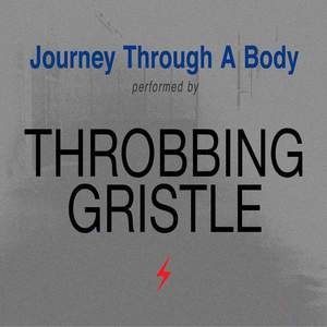 'Journey Through A Body' by Throbbing Gristle