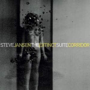 'The Extinct Suite / Corridor' by Steve Jansen