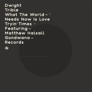 'What The World Needs Now Is Love / Tryin' Times (feat. Matthew Halsall)' by Dwight Trible