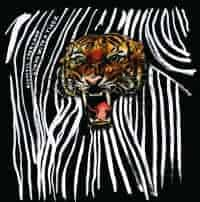Living With a Tiger by Acoustic Ladyland