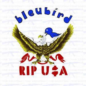 'Rip USA' by Bleubird