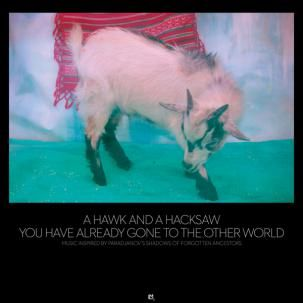 'You Have Already Gone To The Other World' by A Hawk And A Hacksaw
