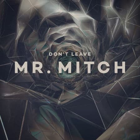 'Don't Leave' by Mr. Mitch
