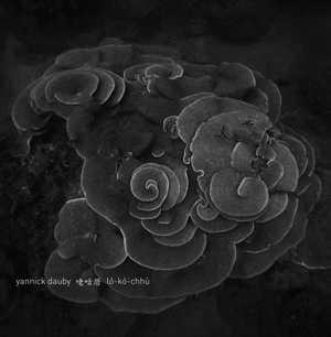 '咾咕厝 (Coral House) Penghu Experimental Sound Studio Vol. 2' by Yannick Dauby