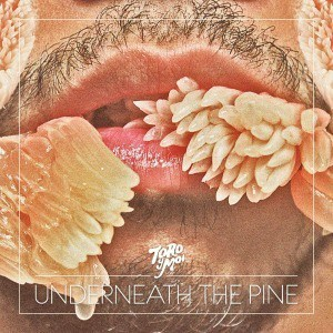 'Underneath The Pine' by Toro Y Moi