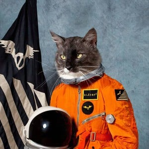 'Surfing The Void' by Klaxons