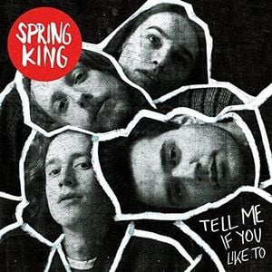'Tell Me If You Like To' by Spring King