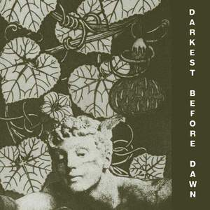 'Darkest Before Dawn' by Dark Day