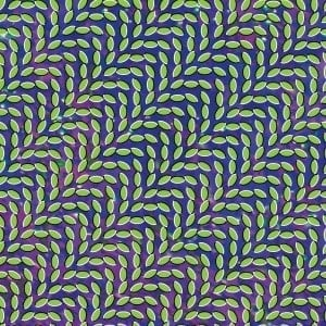 'Merriweather Post Pavilion ' by Animal Collective