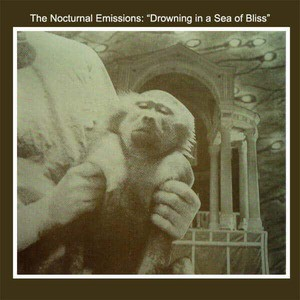 'Drowning In A Sea Of Bliss' by Nocturnal Emissions