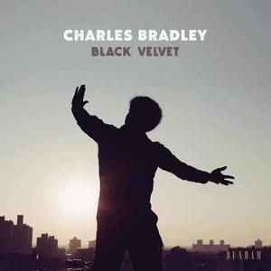 'Black Velvet' by Charles Bradley