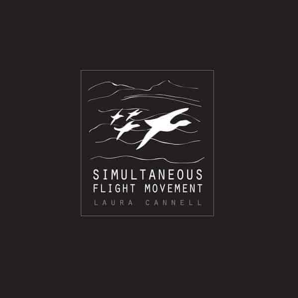 'Simultaneous Flight Movement' by Laura Cannell