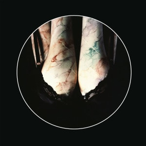 'The Elbow Is Taboo / Elbonus' by Renaldo & The Loaf