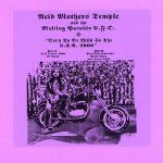 Born To Be Wild In The USA 2000 by Acid Mothers Temple