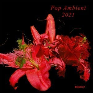 'Pop Ambient 2021' by Various