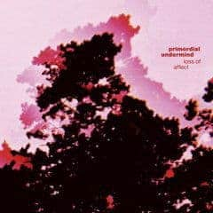 Loss of Affect by Primordial Undermind