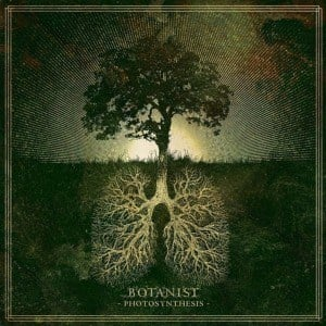 'Photosynthesis' by Botanist