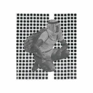'The Album Paranoia' by Ulrika Spacek