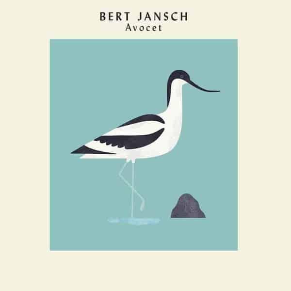 'Avocet' by Bert Jansch