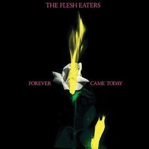 'Forever Came Today' by The Flesh Eaters